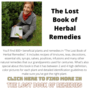 Lost Book Of Herbal Remedies Alt - The Lost Book of Remedies Banner 300X300