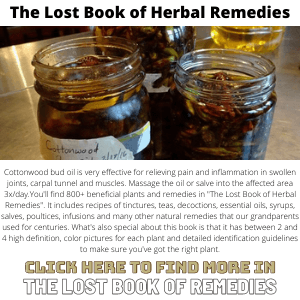 Lost Book Of Herbal Remedies - The Lost Book of Remedies Banner 300X300